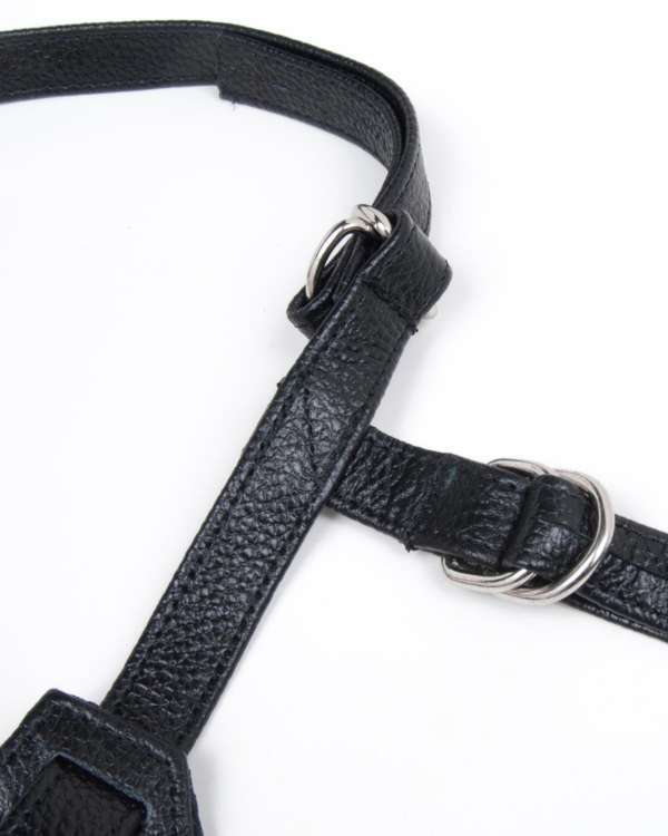 Stormy Leather Terra Firma Dee Strap-On Harness with D-Rings
